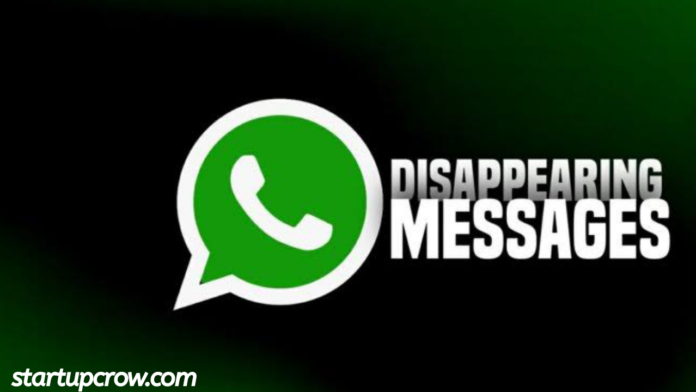 Whatsapp message disappearing