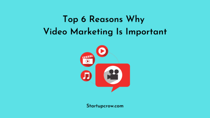 Top 6 Reasons Why Video Marketing Is Important